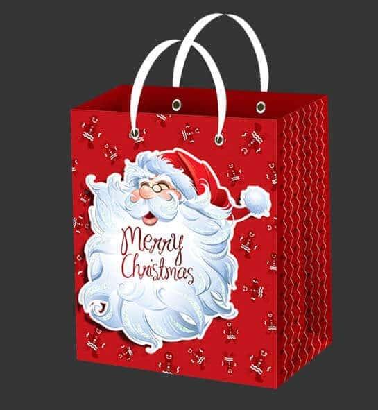 In túi giấy đựng quà giáng sinh giá rẻ tại Vinanetco